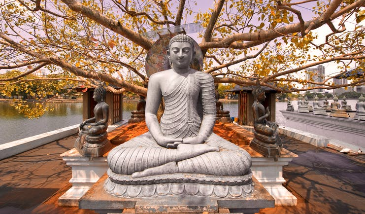 Buddha statue under a tree in Colombo, intricate carving