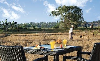 Aliya Sri Lanka paddy field breakfast outdoor dining beside paddy fields