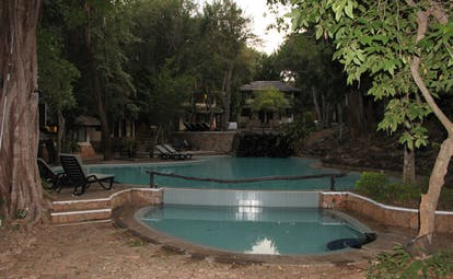 Deer Park Sri Lanka outdoor pool loungers trees