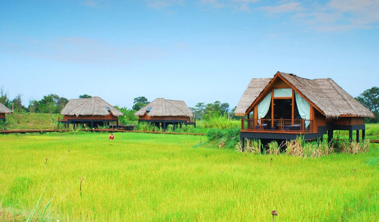 Jetwing Vil Uyana Sri Lanka paddy fields bungalows amongst the paddy fields