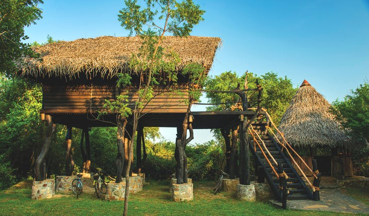 The Mudhouse stilted hut exterior, ladder to hut raised on stilts, green trees