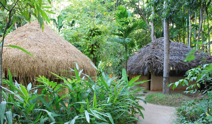 Ulpotha Sri Lanka Ayurveda centre wood thatched huts and forest
