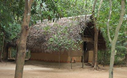 Ulpotha Sri Lanka exterior wooden hut thatched roof trees