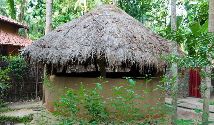 Ulpotha Sri Lanka mud hut wooden thatched roof trees