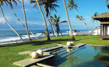 23 Palm Sri Lanka pool lawns palm trees ocean in background