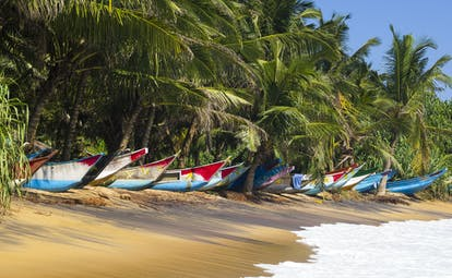 Boats stored on the sand on a beach in Galle, lapping waves, palm trees, colourful boats