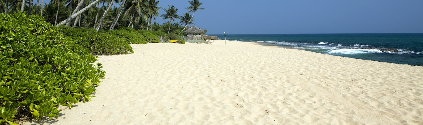 A beach near Tangalle, white sand, blue sea, palm trees, tropical greenery