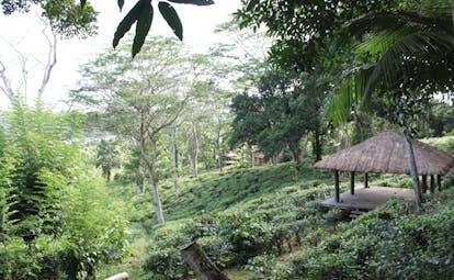 Kahanda Kanda Sri Lanka yoga pavilion in garden