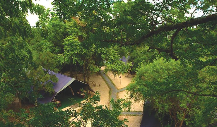 Leopard Trails camp aerial shot, tent, path through the park, trees