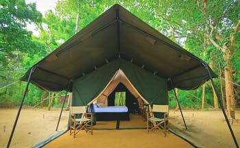 Leopard Trails tent exterior, large tent with two chairs outside door