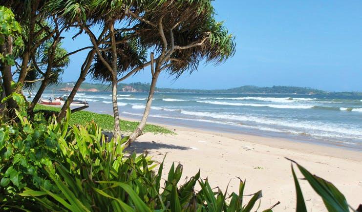 Weligama Bay Resort Sri Lanka beach garden and boats on the beach