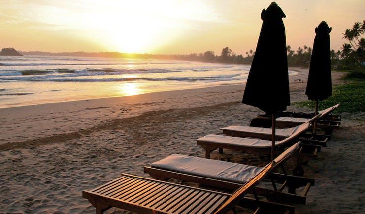 Weligama Bay Resort Sri Lanka beach sunset sun loungers on beach with palms