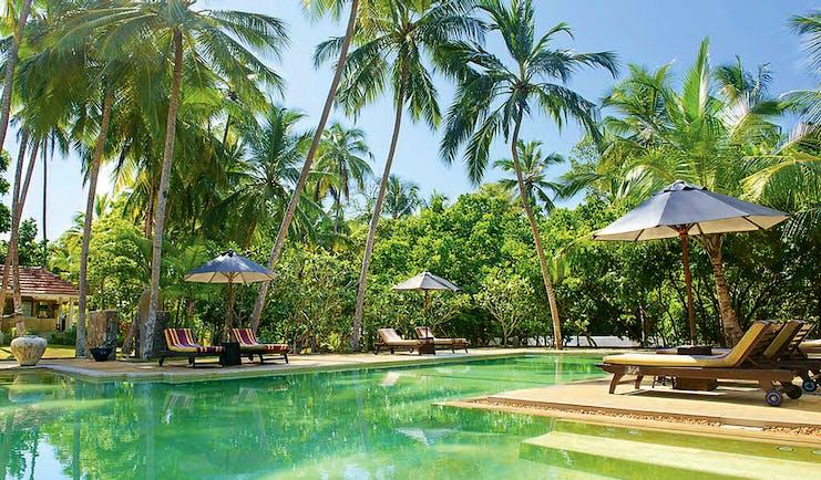 Why House Sri Lanka pool sun loungers umbrellas palm trees