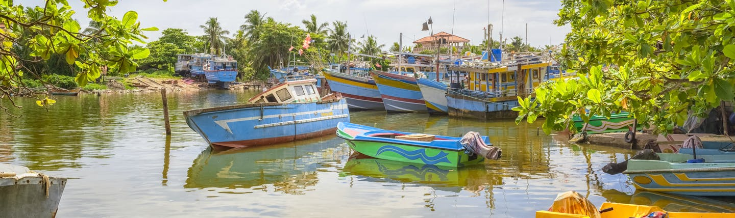 Fishing boats moored and on the water in Negombo, colourful boats, trees