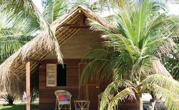 Palagama Beach garden cabana exterior, thatched rood, terrace with chair, surrounded by palm trees