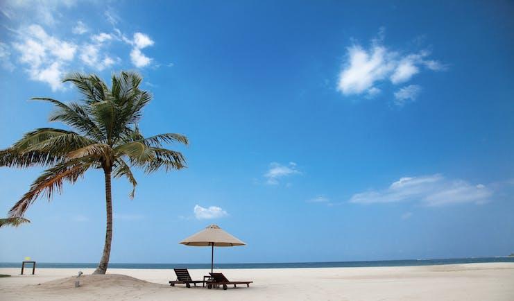 Uga Bay Sri Lanka beach sun loungers umbrellas palm tree white sandy beach ocean