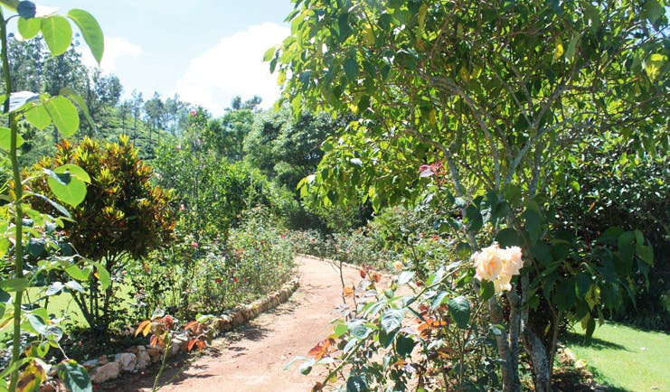 Kirchhayn Bungalow Sri Lanka path through gardens with trees and flowers