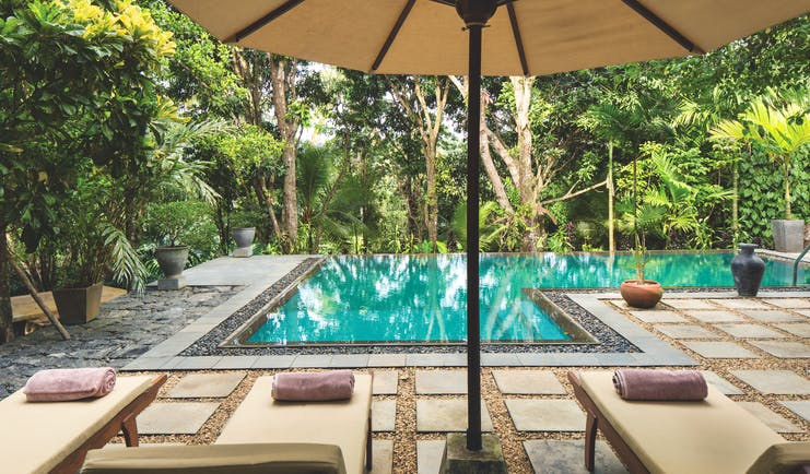Rosyth Estate House Sri Lanka pool sunbeds umbrellas surrounded by trees