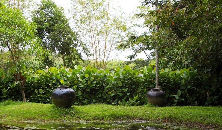 Lunuganga Sri Lanka garden with trees foliage and large urn