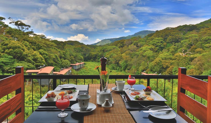 Rainforest Eco Lodge balcony, breakfast set on table, views over fields and trees