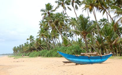 Beach in Bentota, blue wooden fishing boat on sand, palm trees