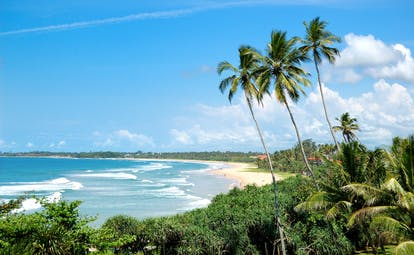 Beach in Bentota, palm trees, tropical greenery, sand, waves, sea