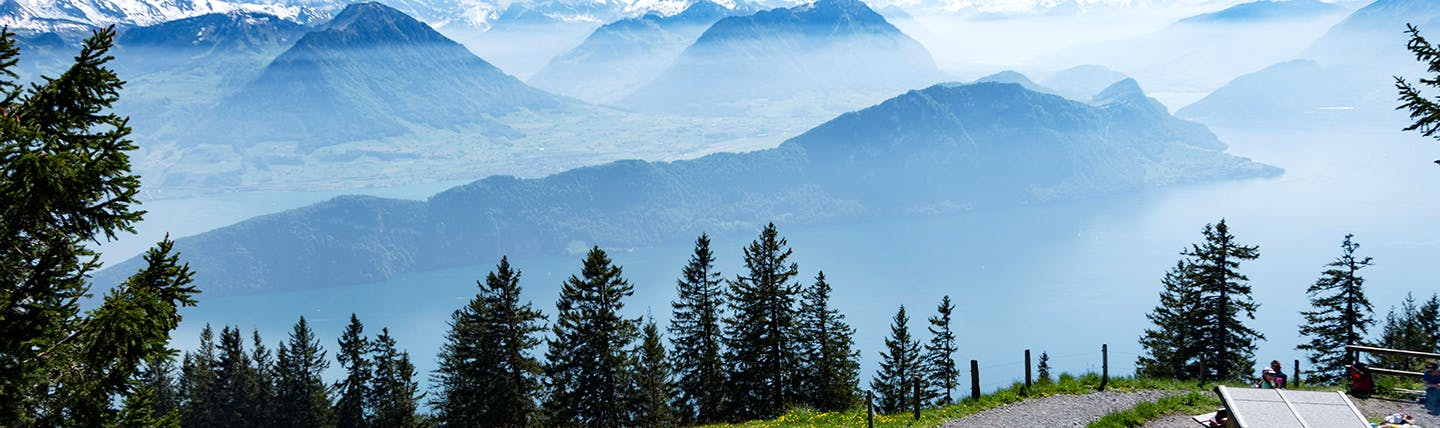 Misy view of pine trees from mountainside on Rigi Lake Lucerne