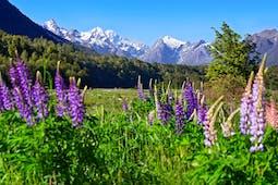 New Zealand luxury exploration holidays