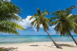 Our Caribbean impressions